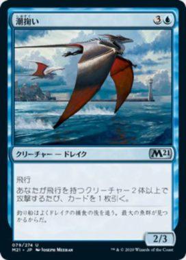 潮掬い(Tide Skimmer)基本セット2021