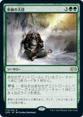 巫師の天啓(ダブルマスターズ・日本語版)