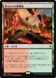 燃えがらの林間地/Cinder Glade