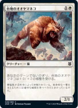 台地のオオヤマネコ(Mesa Lynx)