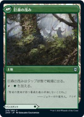 巨森の茂み(Vastwood Thicket)
