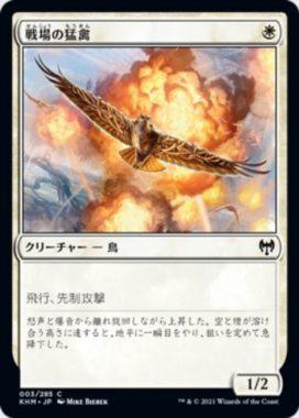戦場の猛禽(Battlefield Raptor)