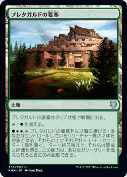 ブレタガルドの要塞(Bretagard Stronghold)カルドハイム