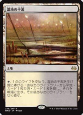湿地の干潟(Marsh Flats)