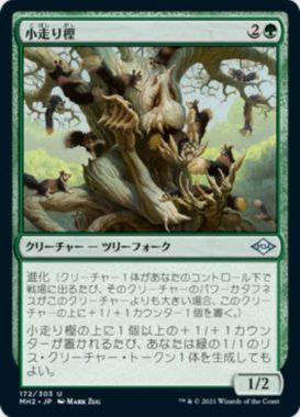 小走り樫(Scurry Oak)