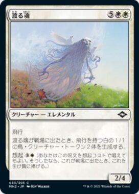 渡る魂(Soul of Migration)