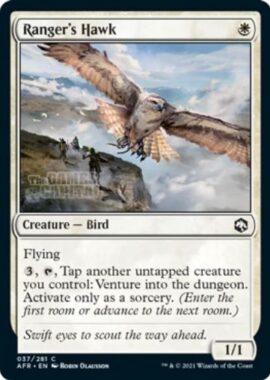 Ranger's Hawk(フォーゴトン・レルム探訪)