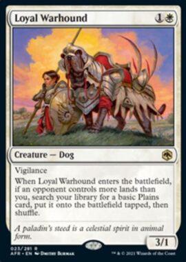 Loyal Warhound(フォーゴトン・レルム探訪)