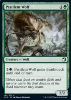 Pestilent Wolf