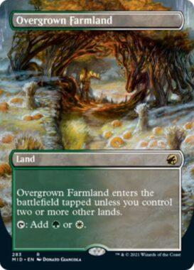 英語版の草茂る農地(Overgrown Farmland)
