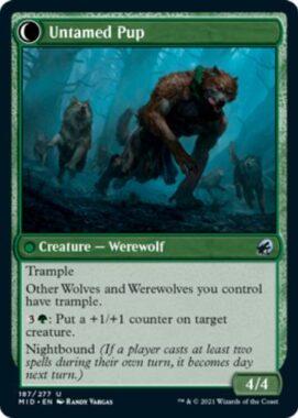 Untamed Pup(イニストラード:真夜中の狩り)